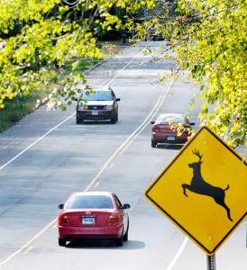 columbia-rte-66-deer-crossing-sign-2-oct-5-2011-274x300