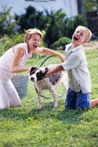fun-dog-bath-pic