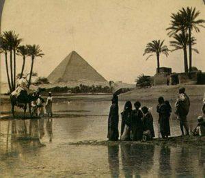pyramiddatepalms