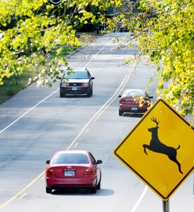 columbia-rte-66-deer-crossing-sign-2-oct-5-2011-274x300