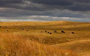 private-land-in-south-dakota